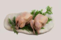 冷凍鳥肉・特殊鶏